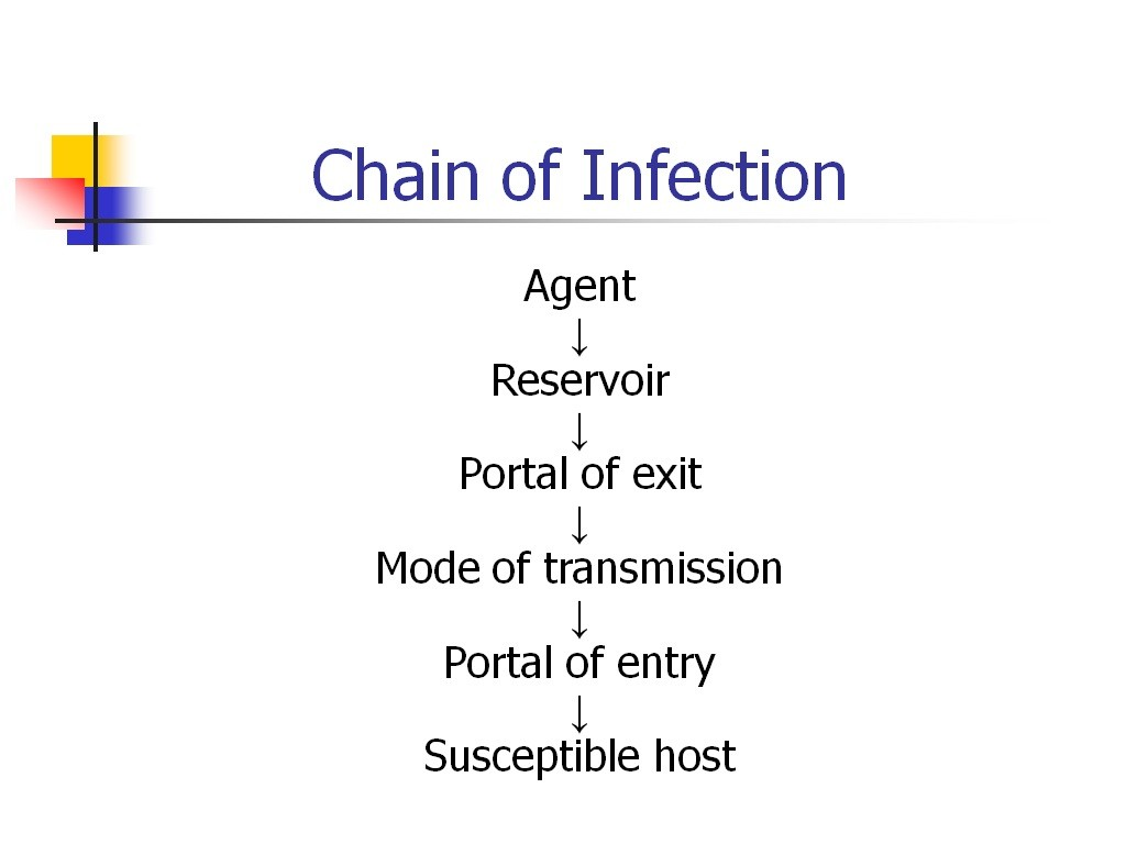 Bloodborne pathogens safety training powerpoints bloodborne pathogens bloodborne pathogens bloodborne pathogens bloodborne pathogens xflitez Gallery