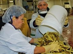 Food Safety: Ensuring Quality Training Video Program